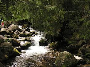 Photo: D9020144 spacer Dolina Olczyska