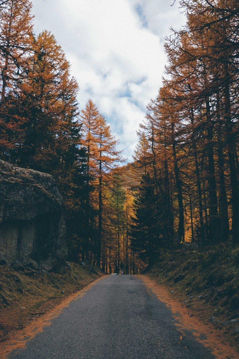 Strade d'autunno. di Max_