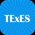 TExES practice test icon