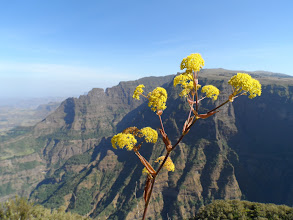 Photo: trekking from Sankaber to Geech in Simien Mountains National Park