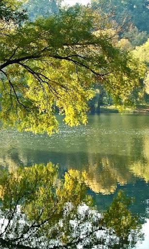 Beautiful silver river