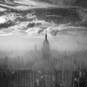 Morning Rain In NYC by Jody Grenier - Black & White Buildings & Architecture