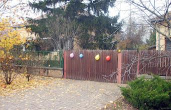 Photo: Baloniki przy furtce -  właśnie w tym domu tu odbywa się przyjęcie urodzinowe (bardzo młodego człowieka).