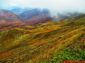 Photo: IMG_4104 i colori dell autunno sull appennino reggiano dallo 00 EXTRAVIVACE