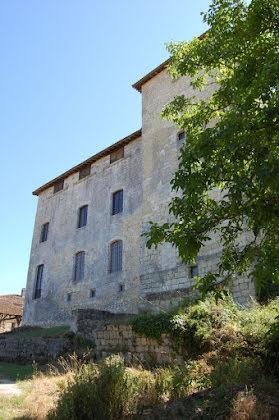 Vente château 11 pièces 862 m2
