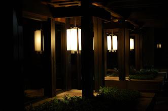 Photo: Zen x3