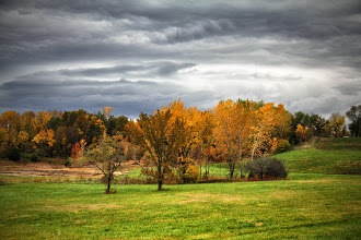 Photo: Rainy day in Excelsior Springs...