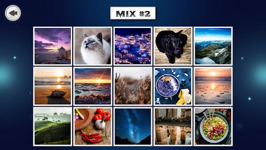 IMAGEine Premium 7