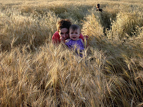 Photo: Girls in the Wheat