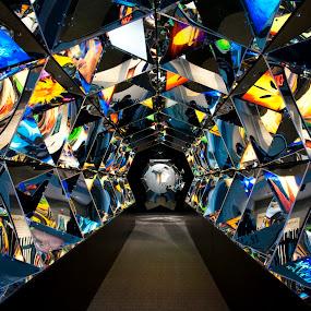 by Anna Stephens - Buildings & Architecture Other Interior ( aquarium, virginia )