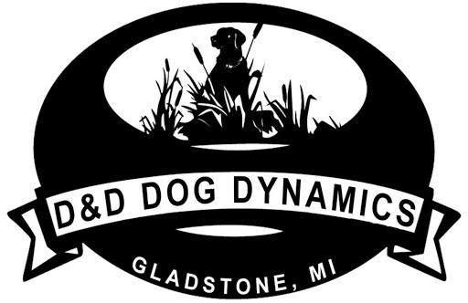 D&D Dog Dynamics