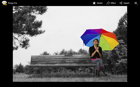 PicSay Pro Apk: PicSay Photo Editor Latest APP For Android 6