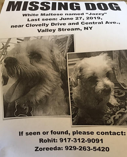 Jazzy, MISSING Jun 27, 2019