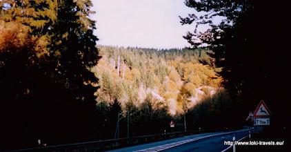 Photo: Oktober 2003. Herfstpracht.
