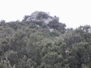 Photo: Puig de la Fillola depuis le Coll de la Ginesta