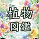 植物 写真 名前 調べる ~図鑑アプリ 観葉植物 サボテンの花 インテリア 多肉 花 ガーデニング~