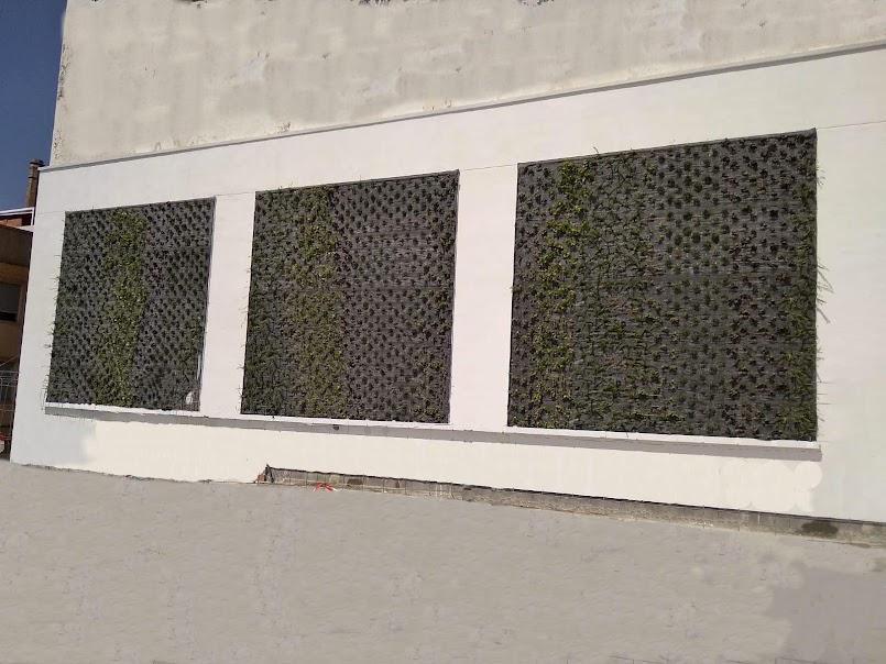 Finalización de la instalación de los jardines verticales