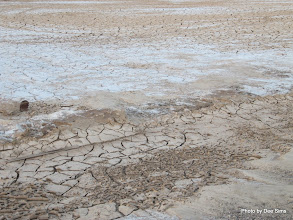 Photo: (Year 3) Day 36 - The Parched Ground