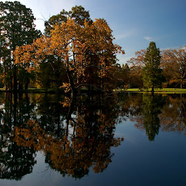 Still Waters by John Berry - Landscapes Waterscapes