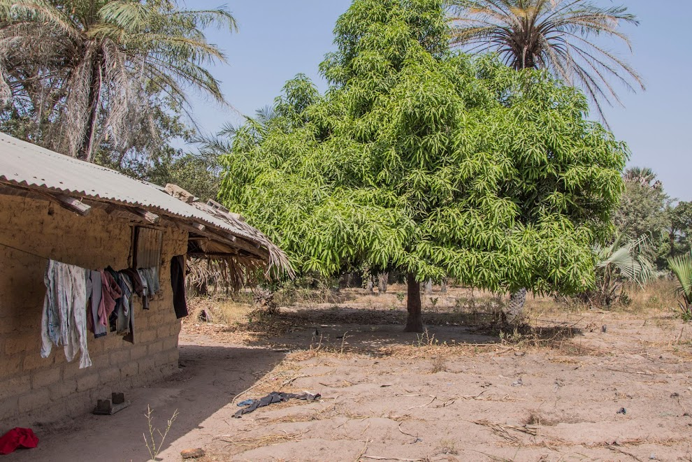 binnenland-gambia