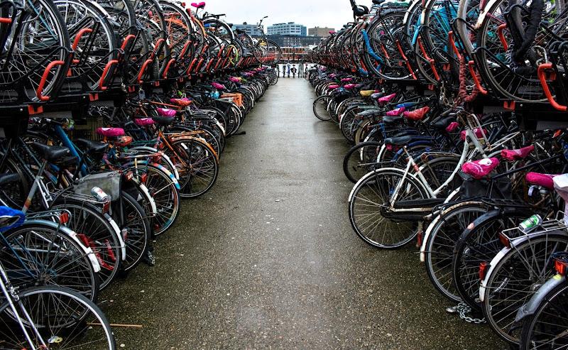 Amsterdam di Paolo Scabbia