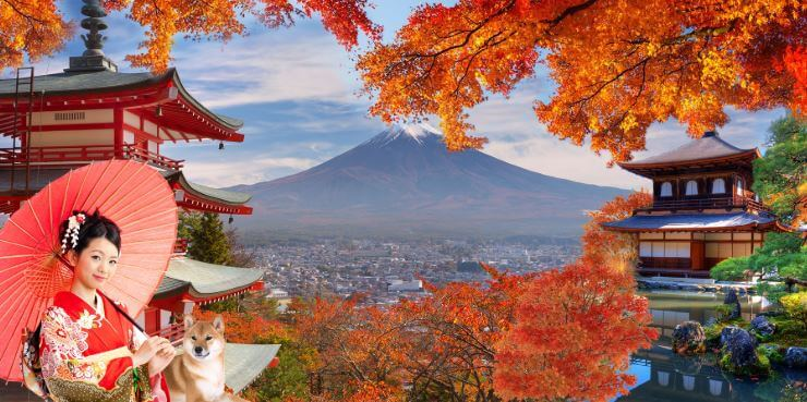 Không nên đến Nhật vào những mùa du lịch cao điểm