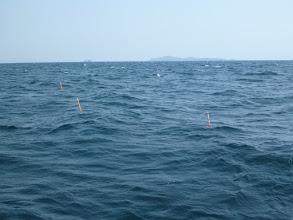 Photo: ・・・予報じゃ「ベタなぎ」のはずが 波、風 あります。