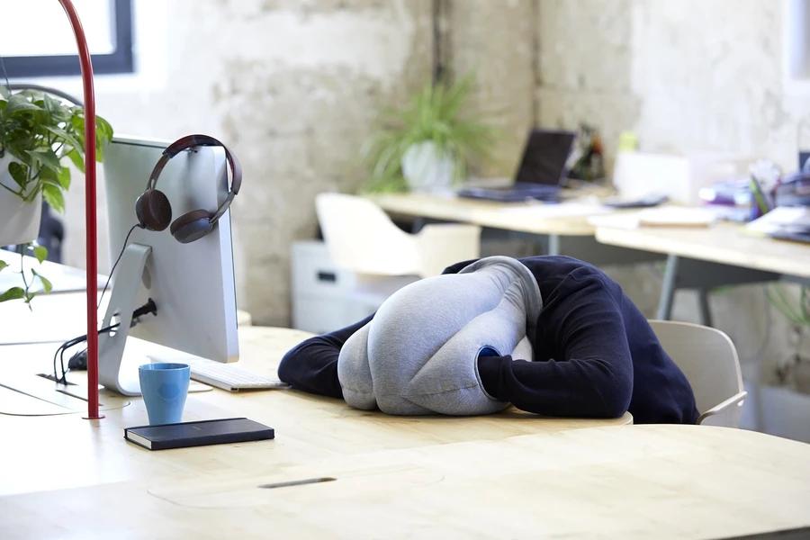 In un ufficio, un dipendente dorme sulla scrivania grazie al cuscino sulla testa di Ostrichpillow. La forma ricorda quella di una conchiglia e permette anche di inserire le mani all'interno per assumere una posizione rannicchiata più comoda. Fonte: Ostrichpillow
