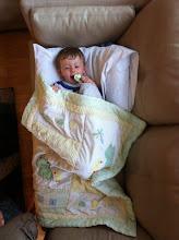 Photo: Finn Enjoys The Couch