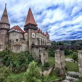 Corvin Castle by Panait Sorin - Buildings & Architecture Public & Historical ( green, castle, corvin, historical, building )