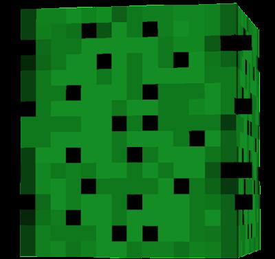 cactuslooksbeter