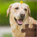 Life Jigsaw Puzzles icon