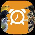 Canto dos Pássaros (Despertador) icon