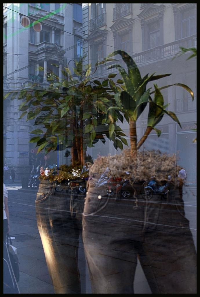 Humantree di kaira