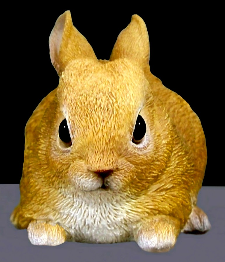 Rabbit 1 by RMC Rochester - Digital Art Animals ( abstract, rabbit, macro, colors, random, animal,  )