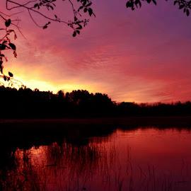 by Mandy Schram - Landscapes Sunsets & Sunrises