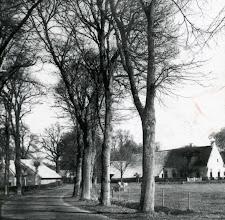Photo: Gieterstraat
