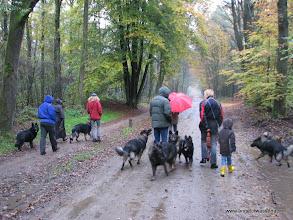 Photo: Met 8 honden, waarvan 7 familie van ons!