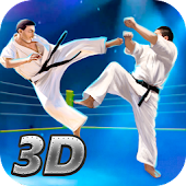 Karate Fighting Tiger 3D - 2