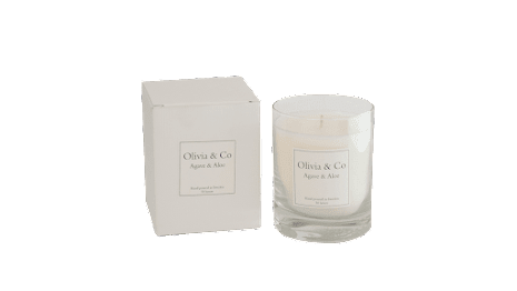 Doftljus Agave & Aloe Stor