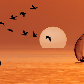 Summer Sailing by Jaysinh Parmar - Digital Art Places ( beach kijkduin )