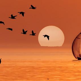 Summer Sailing by Jaysinh Parmar - Digital Art Places ( beach kijkduin )