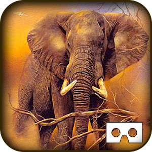 Wild Jungle Tour VR - Animals