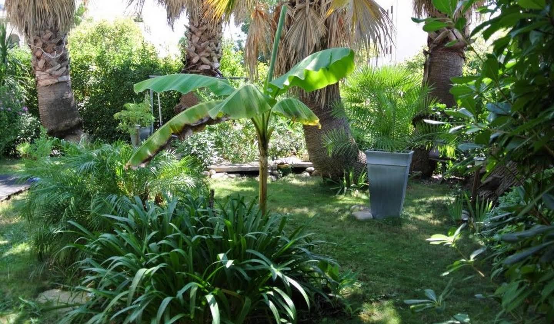 Maison avec jardin et terrasse Hyeres