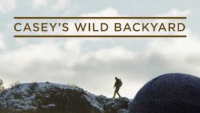Casey's Wild Backyard thumbnail