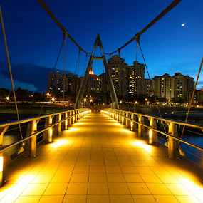 Tanjong Rhu by Richard Amar - City,  Street & Park  Neighborhoods ( leading lines, vanishing point, starbursts, getty images, horizontal, twilight, lines, bridge, dusk, singapore, tanjong rhu )