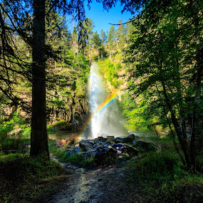 Rainbow by Angelica Less - Landscapes Forests ( rainbow, forest, waterfall, water, mist, landscape )