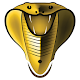 Cobra Plus IPTV für PC Windows