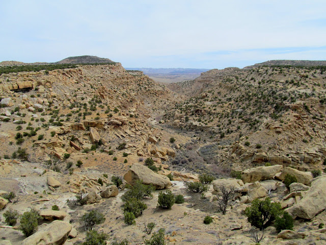Rock Canyon