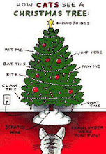 Photo: How Cats See a Christmass Tree.  Thanks +Holly Pozadzides!